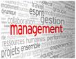 """Nuage de Tags """"MANAGEMENT"""" (travail d'équipe gestion manager)"""