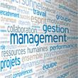 """Nuage de Tags """"MANAGEMENT"""" (gestion ressources humaines équipe)"""