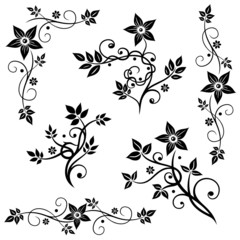 Blumen, Blätter, Ranken, vector set black