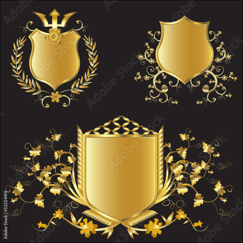 vector golden shields