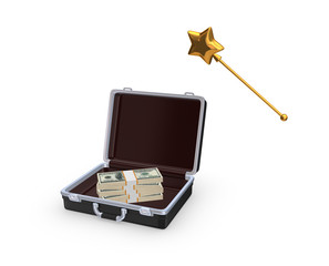 Case with stack of dollars.