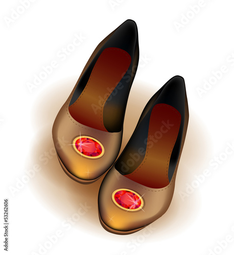 ballets flats shoes with red brooch