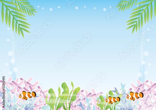 熱帯魚のいる風景
