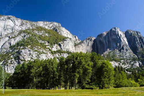 Fototapeten,bäume,fels,gras,california