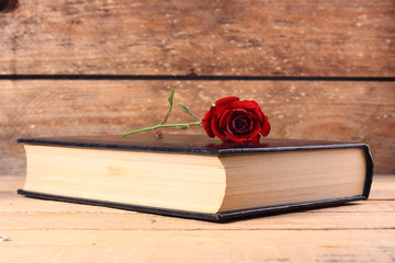 libros con rosa