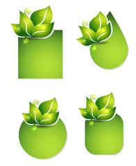 Fresh leafs templates. Various shapes