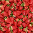 Erdbeeren Ernte