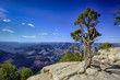 Fototapeten,abstrakt,arizona,barren,butte
