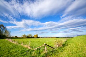 fence on sunny dutch farmland