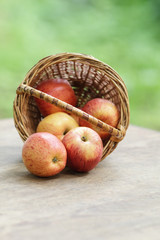 gala apples in a wicker basket