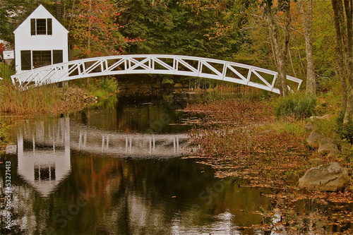 Maine Footbridge 1