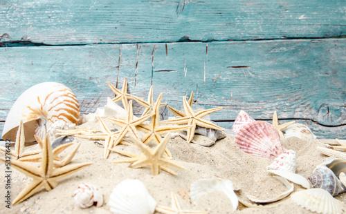 Strandgut und Muscheln vor türkisblauem Holz