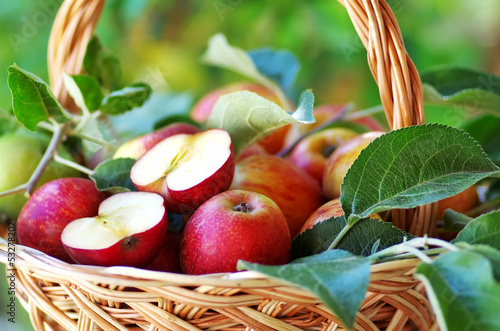 Ripe apples and leaves on basket