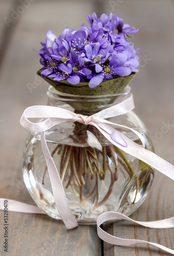 Hepatica flowers, pretty small bouquet in a vase.