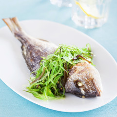 Grilled sea bream and seaweed salad, selective focus