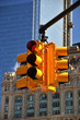 Traffic light. NYC