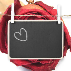 Hand drawing heart on blackboard with dry red rose background, i