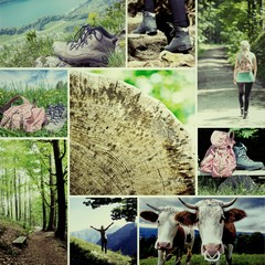 Wander Collage