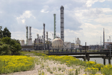Oil Refinery and Spring Flowers