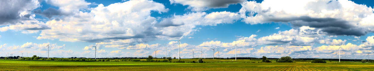 Wind power plants on field panorama
