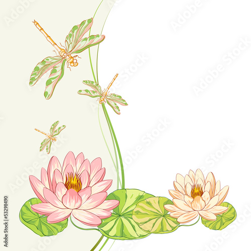 Watercolor label of lotus and dragonfly.