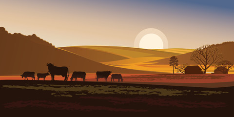 Summer evening landscape with cows