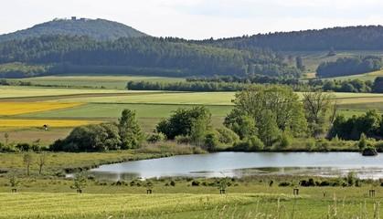 Das Naturschutzgebiet Glockenborn an der Weidelsburg
