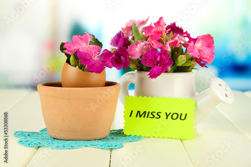 Flowers growing from egg shell, on bright background