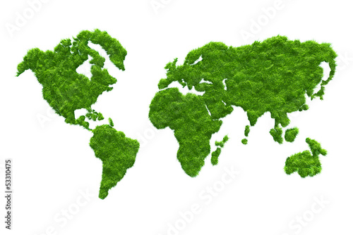 3D grass map