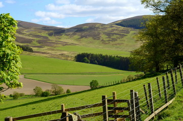 Landscape of Hills and Valley In Agricultural Scottish Borders