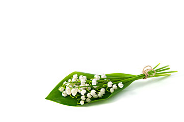 Bunch of white flowers of Lily of the Valley with a green leaf