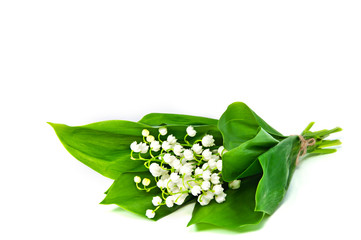 Bunch of white flowers of Lily of the Valley with a few leaves