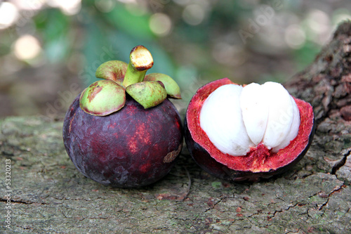 The Mangosteen flesh.