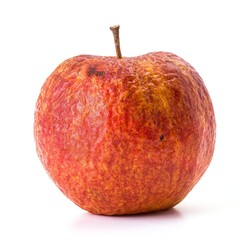 Old apple that is beginning to rot on white background