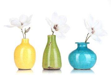 Beautiful magnolia in vases isolated on white