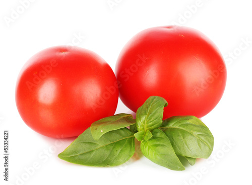 Tomato and basil isolated on white