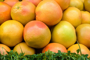 Grapefruit On Market Stand