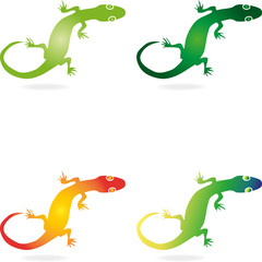 Logo, Echse, Salamander, Geko, Tier