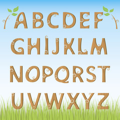 Wooden alphabet. Set wooden letters.