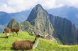 Ancient Inca lost city Machu Picchu