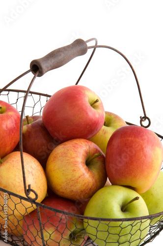 Verschiedene Apfelsorten