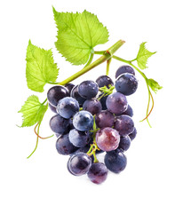 Ripe dark grapes with leaves on white background