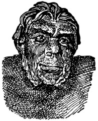 Head of Peking Man (Homo erectus pekinensis)