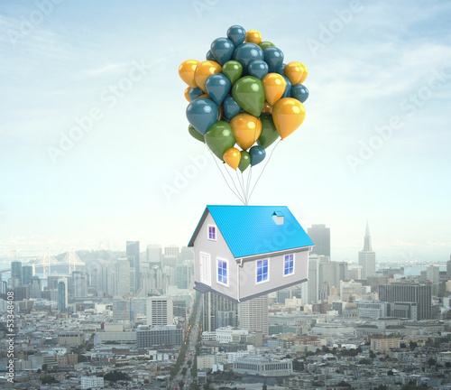 house flying