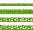 Green grass with daisies and ladybugs banners.