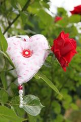 Symbol der Liebe - Herz neben roter Rose
