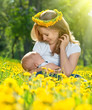 mother  feeding her baby in nature green meadow with yellow flow