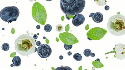 Blueberries falling down on white background