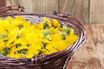 Dandelions in a basket