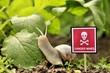 Vorsicht MinenSchnecken Stop